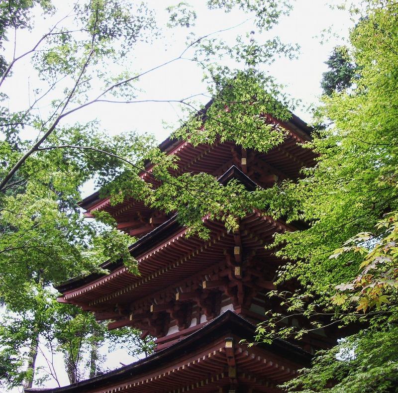 浄瑠璃寺3